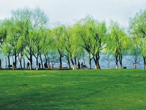 西湖十景是哪十景 西湖十景旅游攻略