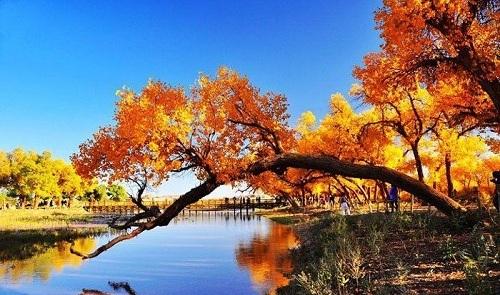 秋天旅游去哪里? 内蒙古3大胜地赏动人秋色