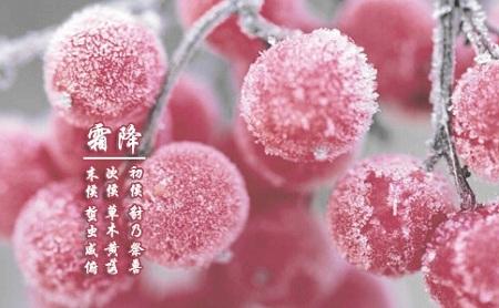 5518,霜降时节天气冷(原创) - 春风化雨 - 诗人-春风化雨的博客
