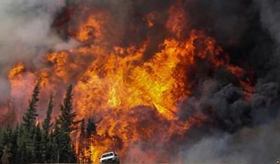 森林大火怎么形成的 如何应急防灾?