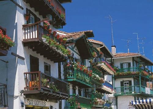 鲜花绿草中的浪漫欧洲小镇 步步皆美景图片