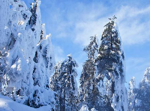 冬季旅游景点推荐图片